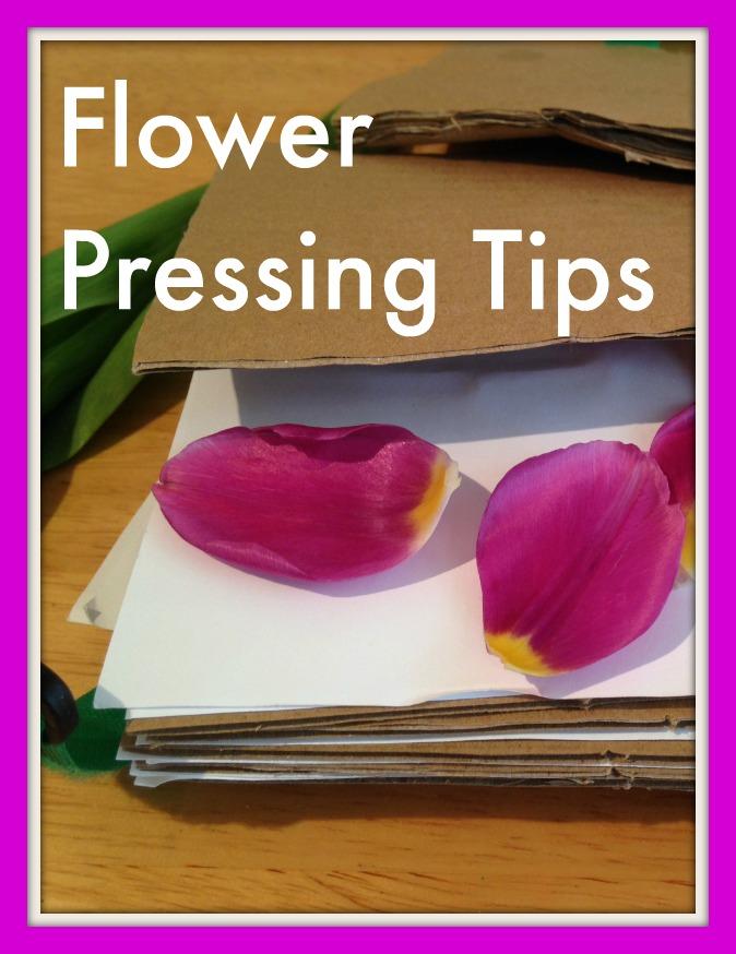 flower pressing tips