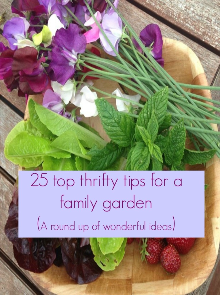 A collection top thrifty tips for a family garden. Lots of ideas and ways to save money in your garden whilst still making it look amazing,