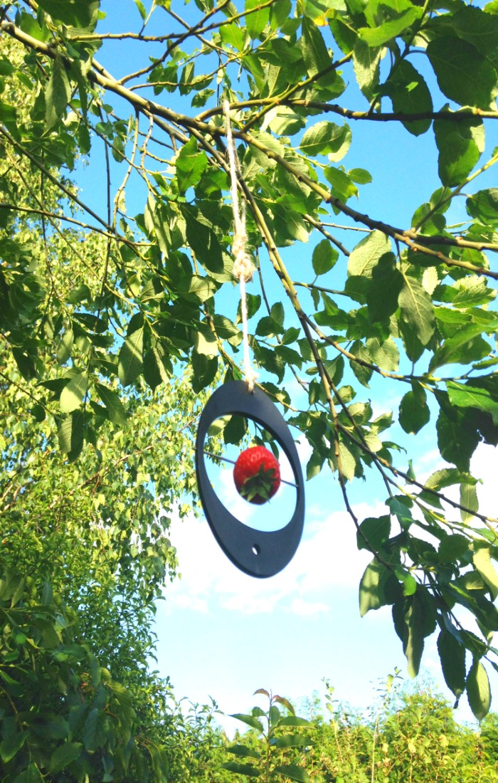 bird feeder eco