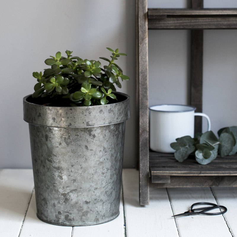 How to style zinc planters