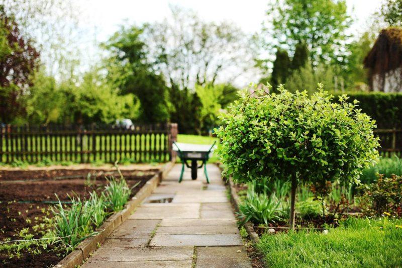 wheelbarrow in garden, Make the Most of Your Garden