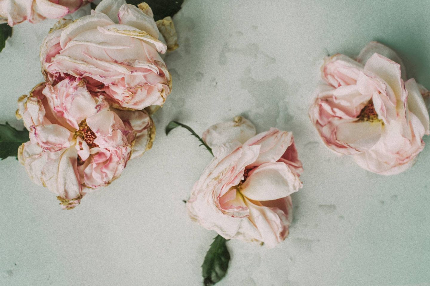 Advice For Coping With The Loss Of A Loved One