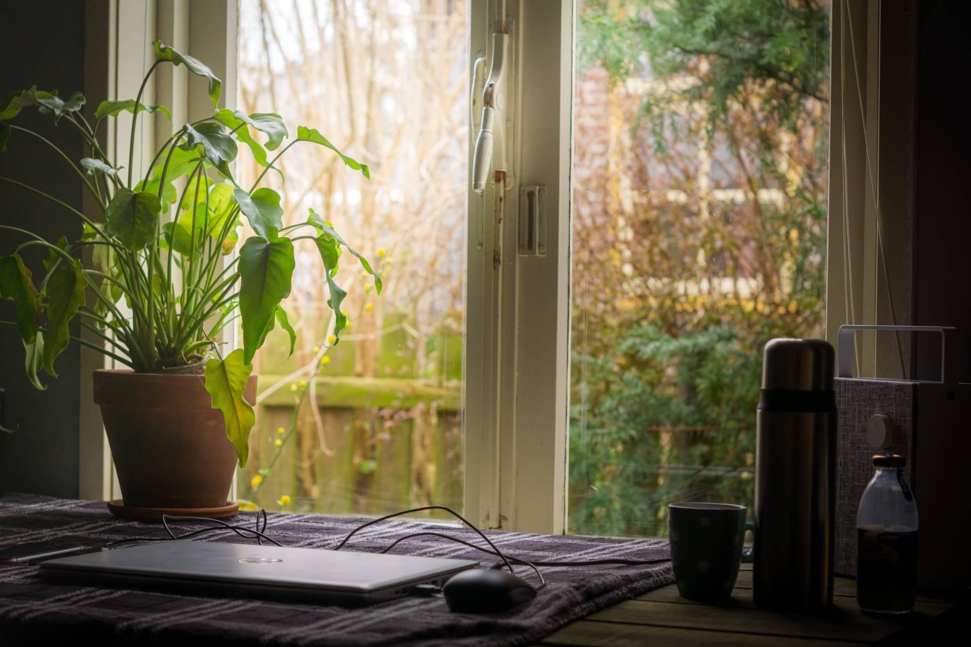 Benefits Of A Garden Office